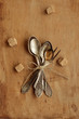 Bunch of vintage teaspoons and lemon fork tied up with bow