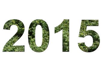 yeşil 2015