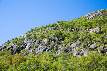 Green Hillside with Rock Surface