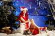 Young beauty smiling santa woman near the Christmas tree. Fashio