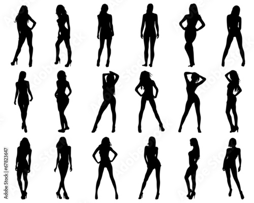 Silhouettes of beautiful and sexy girls, vector - 67823647