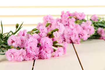 Many small pink cloves on wooden background