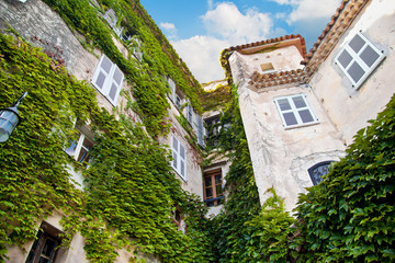 Historical building with green plant vegetation. In Eze Village,