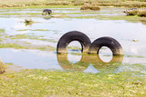 A discarded old tyre in a puddle of contaminated water poster