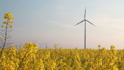 wind turbine - behind rape field - energy mix