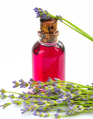 Aroma oil with lavender flowers on a white background