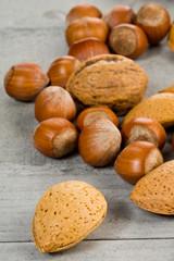 noisettes , amandes et noix
