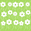 Abstract white flowers on green background