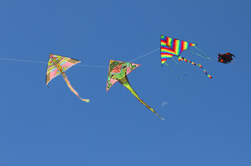 four beautiful kites flying in the blue sky