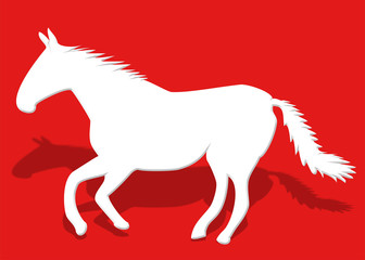 beyaz at tasarımı