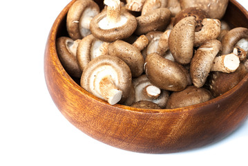 Fresh mushrooms in bowl on white background