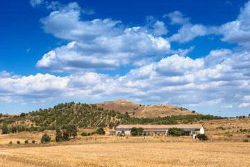 Sardegna, fattoria tra i campi