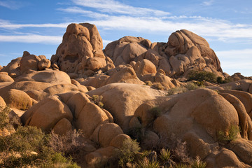 Bizarre Rock Formations in Joshua Tree National Monument