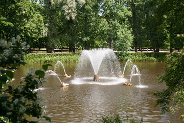 Small pond with fountains designed by Peter The Great