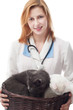 veterinarian woman holding a basket of cats