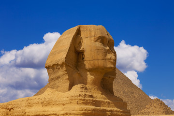 The head of the sphinx