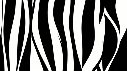 Black and white curvy zebra stripes