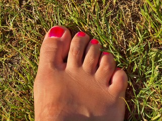 Woman leg with nice red polished nails lies on old cut grass