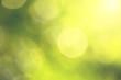 Zdjęcia na płótnie, fototapety, obrazy : Vintage blurry green background