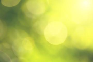 Vintage blurry green background