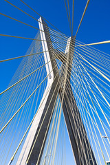 Detail of a cable-stayed bridge in Sao Paulo