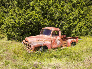 Red Truck By Forest