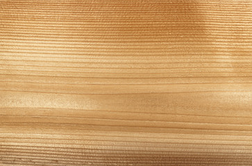 Woodgrain macro background