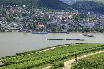 River Rhine barges and vineyards