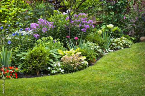 Garden and flowers - 67853415