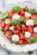 Caprese salad with capers and green basil leaves, vertical shot