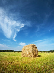 Hay bale with blue sky
