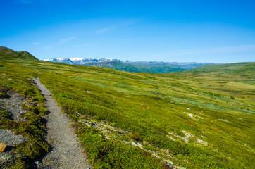 Trekking in the Landscape of Hardangervidda - Norway