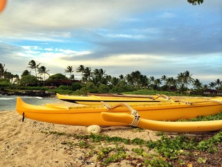 yellow boats at beach in Hawaii