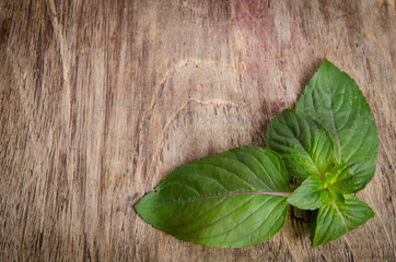 a sprig of mint on wooden table