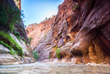 Canyon in Zion National Park, Utah, USA