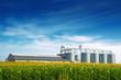 Leinwandbild Motiv Grain Silos in Corn Field