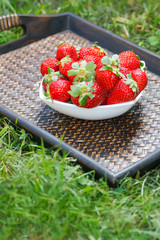 Strawberries on tray