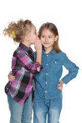 Little girl whispers something to her friend