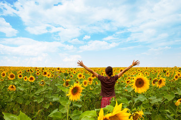 Beautiful woman among sunflowers