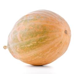 Calabash pumpkin