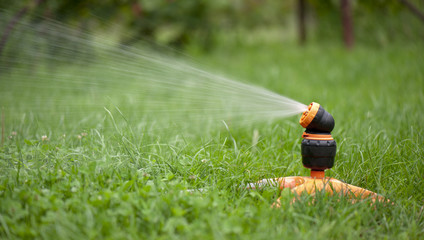 sprinklers for the grass in the yard