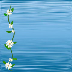 colorful flower on blue background