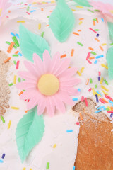 Easter cake decorated with flower.