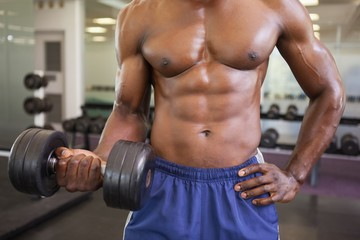 Muscular man exercising with dumbbell in gym