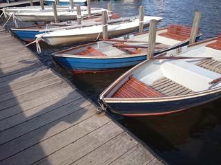 Ruderboote auf der Alster