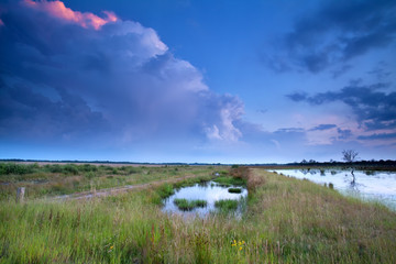 stormy sky at sunset over swamp