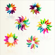 Set of flower designs