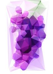 Triangulated Purple Grape