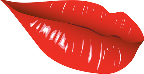 Realistic vector lips