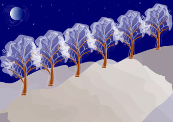winter night landscape with trees